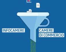 (Italiano) Progetto Excelsior </BR> InfoCamere